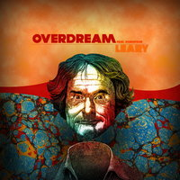 Leary (feat. DubMyDub) — Overdream