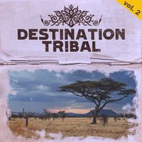 Destination Tribal, Vol. 2 — сборник