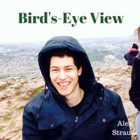 Bird's-Eye View — Alex Strauss