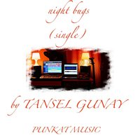 Night Bugs — Tansel Gunay