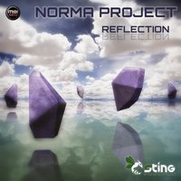 Reflection — Norma Project