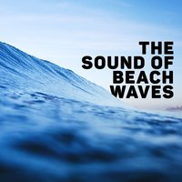 The Sound of Beach Waves — Beach Waves Specialists