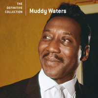 The Definitive Collection — Muddy Waters
