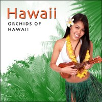 Orchids Of Hawaii - Hawaiian Guitar — Harry Kalapana