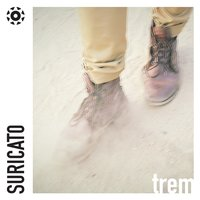 Trem - Single — Suricato