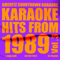 Karaoke Hits from 1989, Vol. 3 — Ameritz Countdown Karaoke