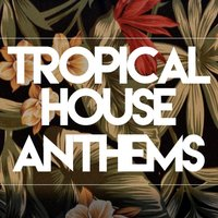 Tropical House Anthems — сборник