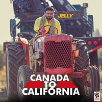 Canada to California — Jelly