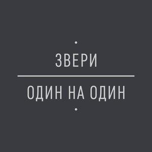 Звери - Птенец