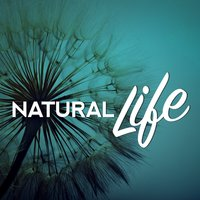 Natural Life — Nature Sound Series, Nature Sounds Meditation, Nature Sounds for Concentration, Nature Sound Series|Nature Sounds for Concentration|Nature Sounds Meditation