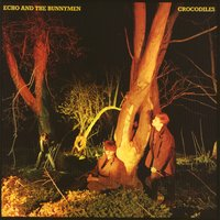 Crocodiles — Echo and the Bunnymen