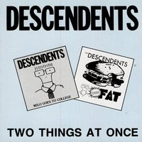 Two Things At Once — Descendents