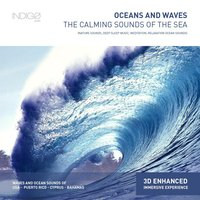 Oceans and Waves: The Calming Sounds of the Sea — Roberto Aval