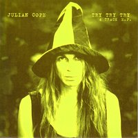 Try Try Try — Julian Cope