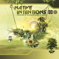 Native Intentions — Entropy
