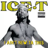 I Ain't New Ta This — Ice T