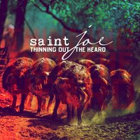 Thinning Out the Heard — Saint Joe