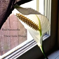 These Little Things — Paul Summerlin