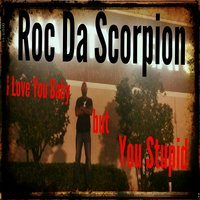 I Love You Baby but You Stupid — Roc da Scorpion