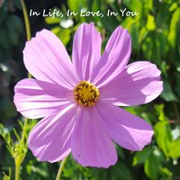 In Life, in Love, in You (feat. Eric Andersen) — Eric Andersen, Chance Geving