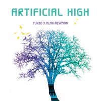 Artificial High — Alan Newman, Funzo