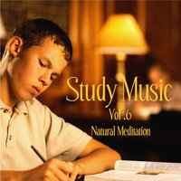 Music for Study, Concentration, and Relaxation Vol. 6 Natural Meditation — Study Music