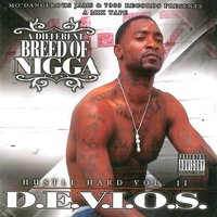 A Different Breed of Nigga — Devios