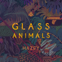 Hazey — Glass Animals