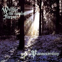 Within the Ancient Forest — Paramaecium