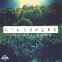 Lost in the Woods - Single — Consumers