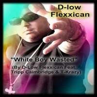 White Boy Wasted (feat. Tripp Caimbridge & T-Krazy) — D-Low Flexxican