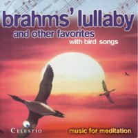 Brahms' Lullaby and Other Favorites with Bird Songs - Best of Brahms — Various Orchestras - Verschiedene Orchester