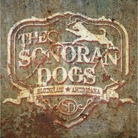 The Sonoran Dogs — The Sonoran Dogs