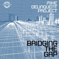 Bridging the Gap — Mike Delinquent Project