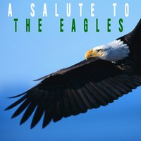 A Salute To The Eagles — Desperado Heroes