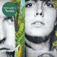 Nests — She Keeps Bees