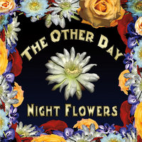 Night Flowers — The Other Day