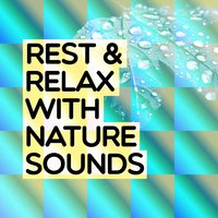 Rest & Relax with Nature Sounds — Rest & Relax Nature Sounds Artists