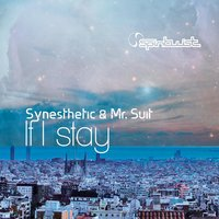 If I Stay — Synesthetic, Mr. Suit