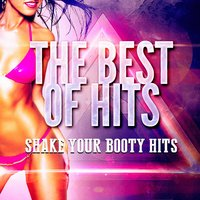 Shake Your Booty Hits — Best Of Hits