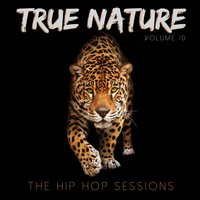 True Nature: The Hip Hop Sessions, Vol. 10 — сборник