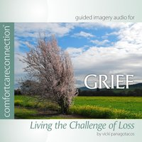 Grief: Living the Challenge of Loss (feat. Vicki Panagotacos, PhD, FT) — Comfortcareconnection