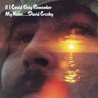 If I Could Only Remember My Name — David Crosby
