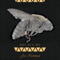Busy As A Bee — Joe Newman