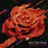 Raindrops On Roses — An-ten-nae