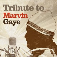 Tribute to Marvin Gaye — Flies on the Square Egg