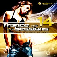Drizzly Trance Sessions, Vol. 14 — сборник