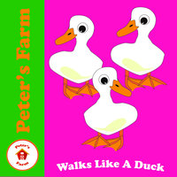 Walks Like a Duck — Peter's Farm