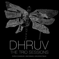 The Trio Sessions — Dhruv Ghanekar