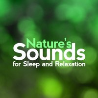 Nature's Sounds for Sleep and Relaxation — Nature Sounds for Sleep and Relaxation